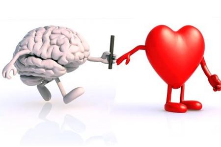 Van hoofd naar hart